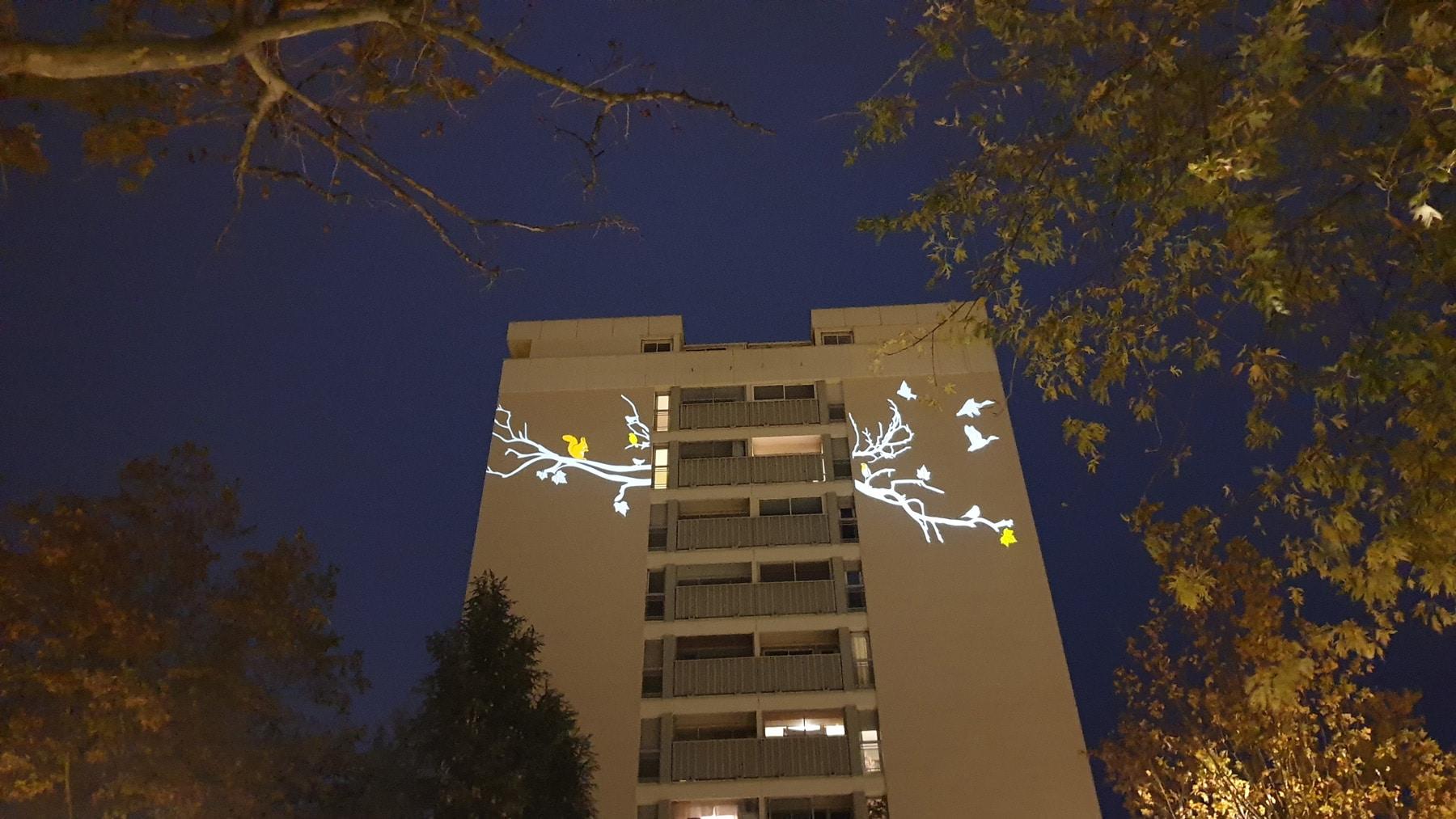 projection lumière d'images branches et nature sur une façade aveugle d'immeuble